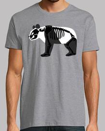 scheletro di panda