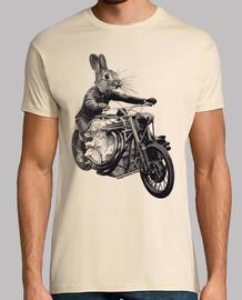 schnelle kaninchen 2