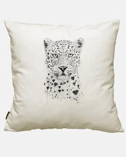 schöner leopard