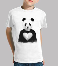 schöner panda