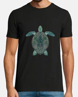 sea turtle (caretta caretta)