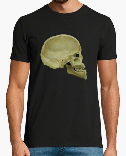 Camiseta Sección medio sagital del cráneo