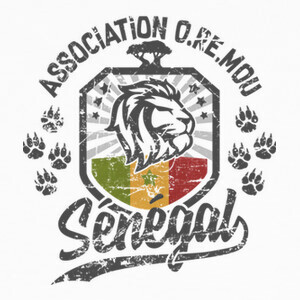 senegal lion terra oremou T-shirts