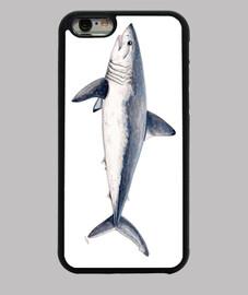 shark cailón (lamna nasus)