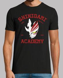shinigami accademia