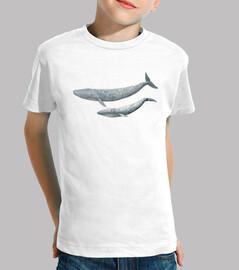 shirt de garçon baleine bleue (balaenoptera musculus)