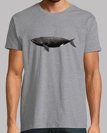 shirt homme atlantique baleine droite