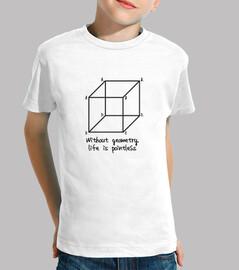sin geometría la vida es insustancial