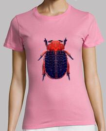 Skin beetle-Escarabajo de piel