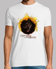Smaug Fire&Death