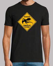 Smaug flying