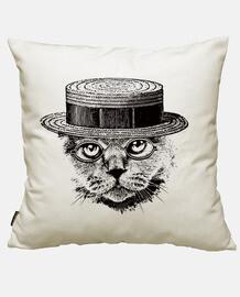 sofisticato gatto serio