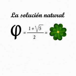 Solución natural ecuación T-shirts