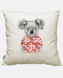 Sommer Koala
