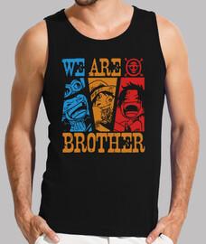 somos hermanos - una pieza de anime