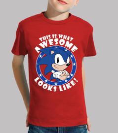 Sonic the Hedgehog Looks Like! (Infantil)