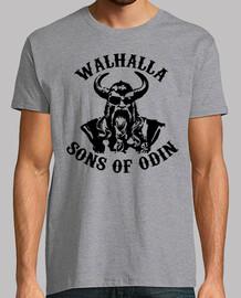 Sons of Odín
