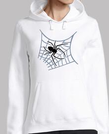 Spinnenspinnennetz