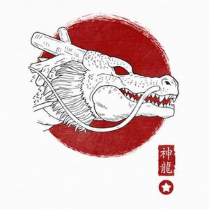 Tee-shirts Spirit Dragon
