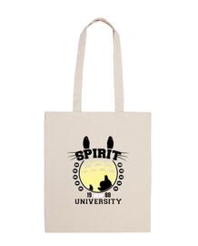 spirit university