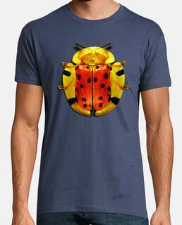 Spotted tortoise beetle-Escarabajo tortuga manchado