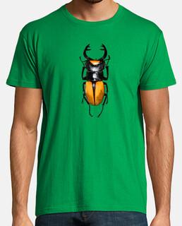 Stag beetle-Ciervo volante