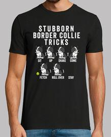 Stubborn Perro Border Collie Tricks