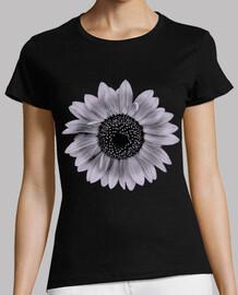 sunflower flower mallow / sunflowers
