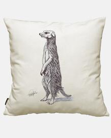 suricate suricate