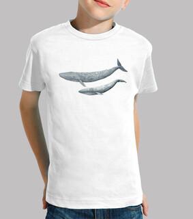 t-shirt bambino blu balena (balaenoptera musculus)