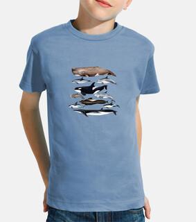 t-shirt bambino e ragazza balene, capodogli e delfini