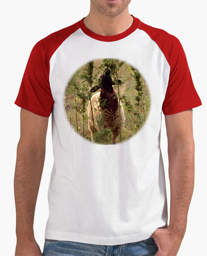 T-shirt beeeee marijuana (petto)