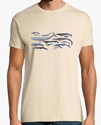 T-shirt da uomo balene, megattere e balenottere