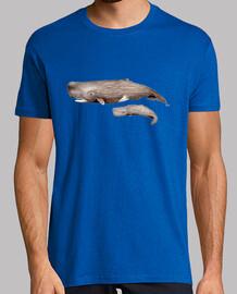 t-shirt da uomo cachalote