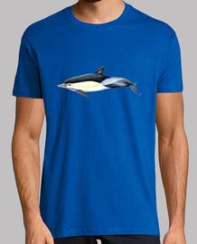 t-shirt delfino comune (delphinus delphis)