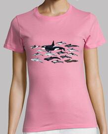 t-shirt donna orche, delfini e blackfish