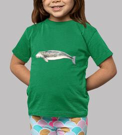 t-shirt dugongo (dugong)