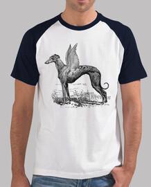 t-shirt levriero divina uomo