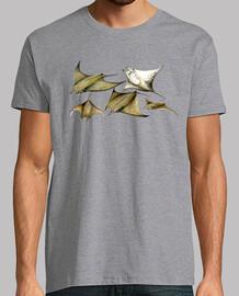 t-shirt manta ray (mobula tarapacana)