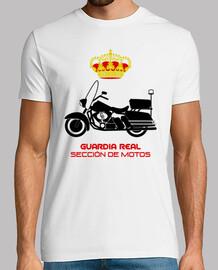 t gr section motos mod.1