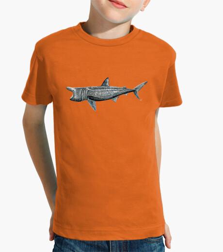 Vêtements enfant t requin pèlerin (cetorhinus maximus)