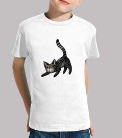 tabby niño gato t