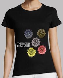 the b-cells remember dark mmc