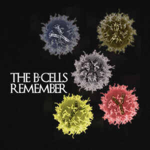 Camisetas The B-cells Remember oscura