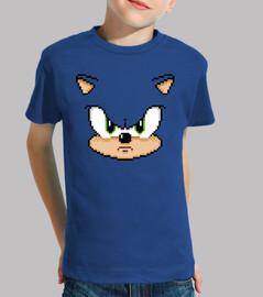 the hedgehog (children)