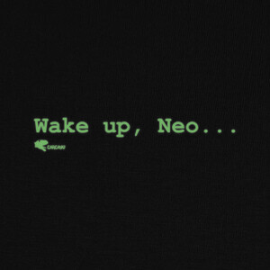 Camisetas THE MATRIX Wake up, Neo...