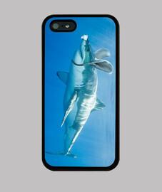 Tiburón disfrazado de conejito