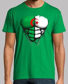 Torse corps muscle drapeau Algerie