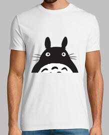 Totoro 4A