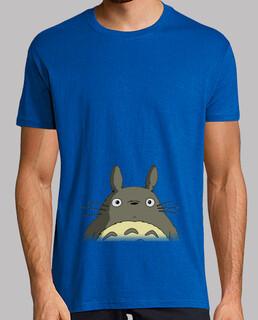 Totoro (cara)